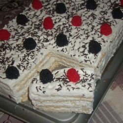 Biscuit Cake with Chocolate and Cream