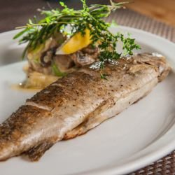Quick Oven-Baked Trout