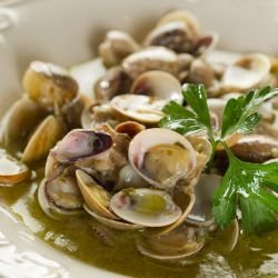 Mussels Recipes