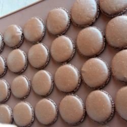 French Cocoa Macarons