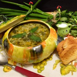 Spinach Stew Recipes