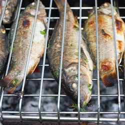 Grilled Carp Recipes