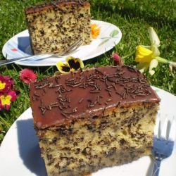 Russian Recipes with Baking Powder