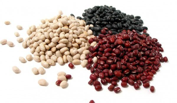 beans in many colors
