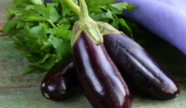 Can Eggplants be Frozen in the Freezer?