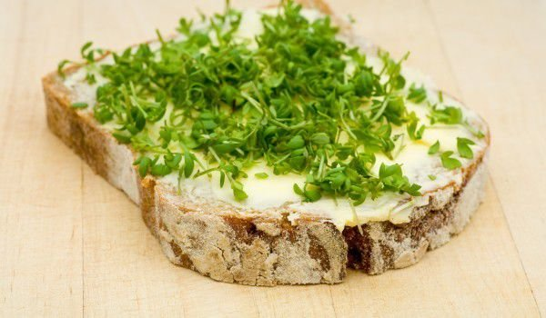 Sandwich with Cottage Cheese Pâté and Spices