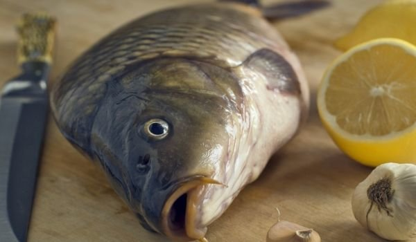 Cleaning carp